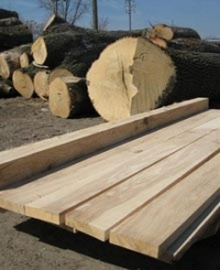 Logs and Lumber